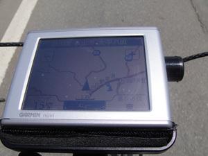 bcl-6-9m.jpg